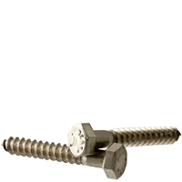 "1/4""-10x6"" HEX LAG SCREWS STAINLESS STEEL  (18-8) (Bulk Qty: 300pcs  )"